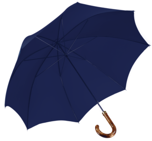 french-blue-umbrella-james-ince