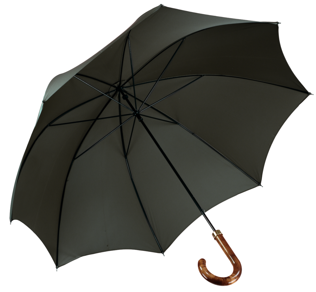 racing-green-umbrella-james-ince