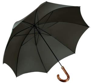 racing-green-umbrella-james-ince